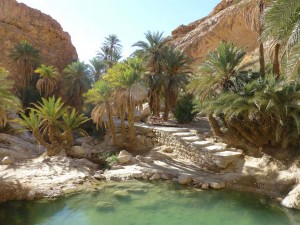 douz desert 2016